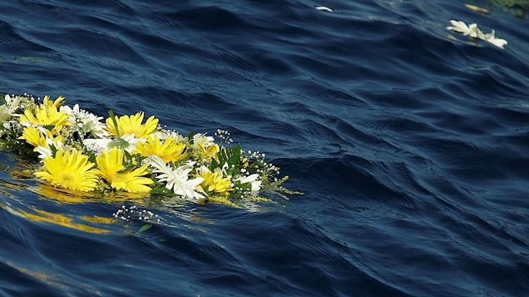 Blommor i havet
