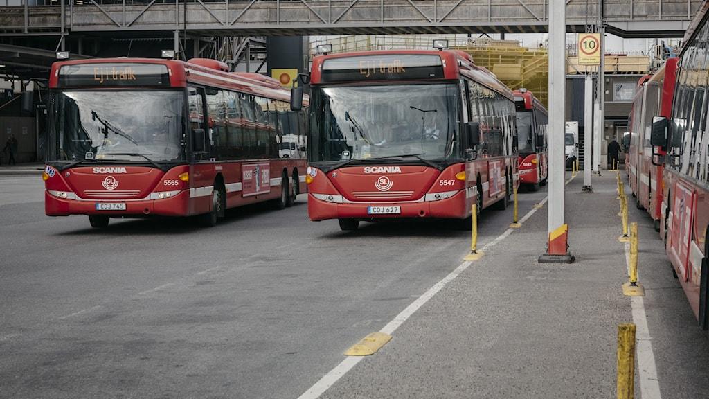 Två parkerade SL-bussar.