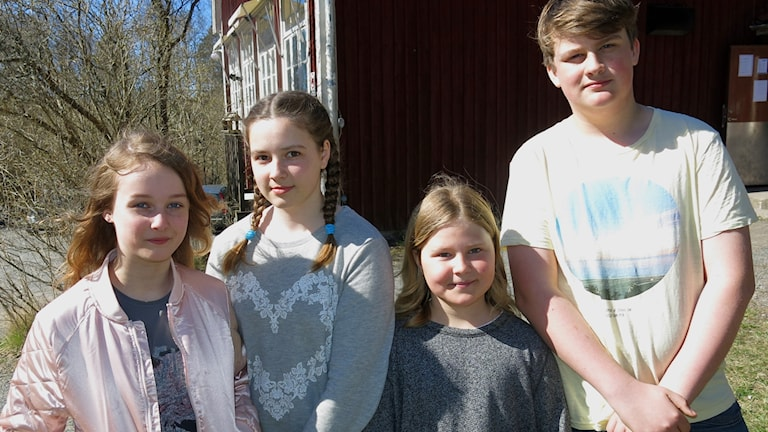 Eleverna Rebecka Almkvist, Alma Rothoff, Lea Toresson och Hampus Åkersten på Björkö-Arholma skola.
