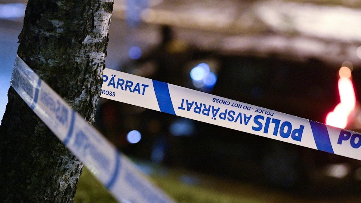 Polisens avspärrningstejp fäst kring trädstam.
