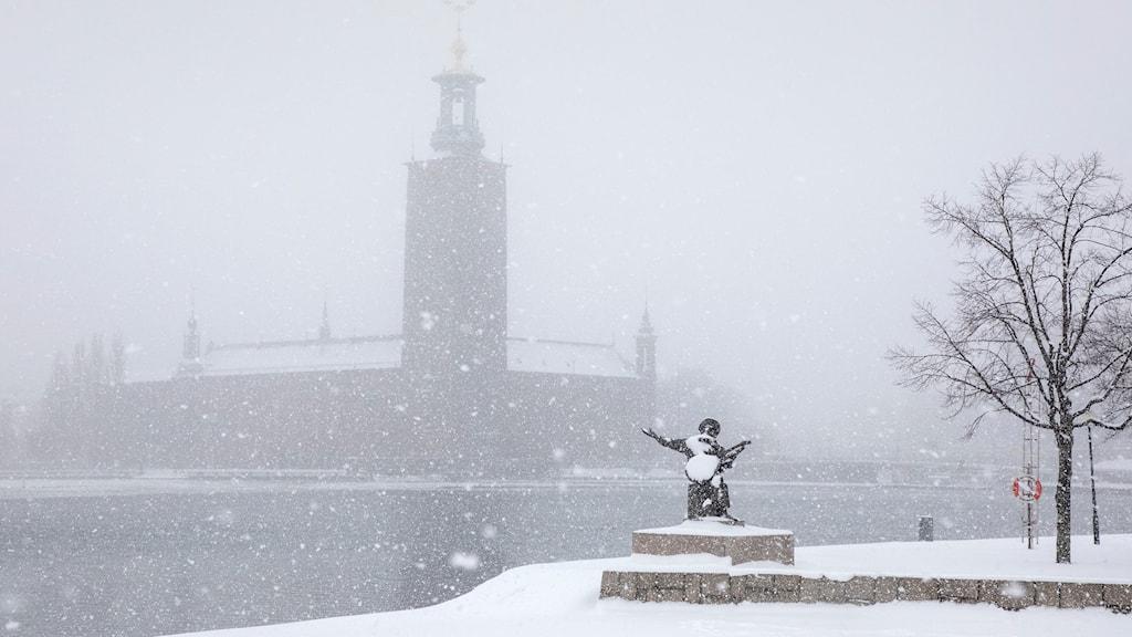 Vinter-OS i Stockholm?