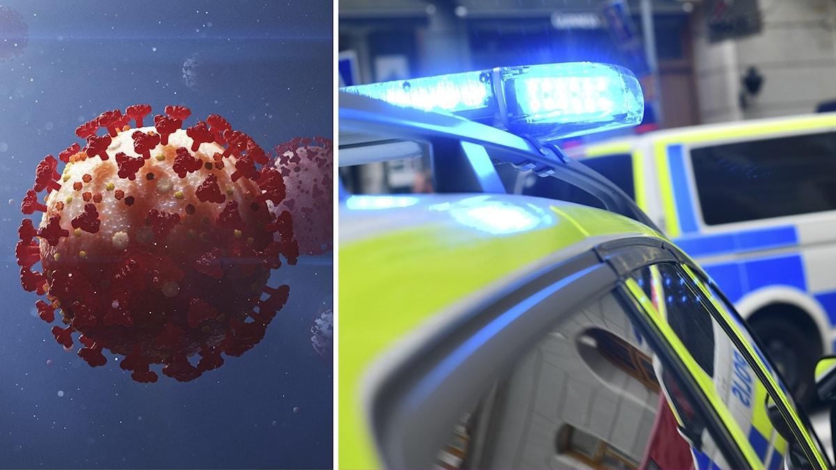 Till höger, polisbil med blåljuset påslaget. Till vänster, Skiss av coronaviruset.