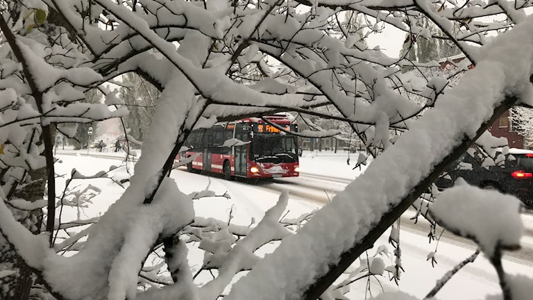 Buss i snö