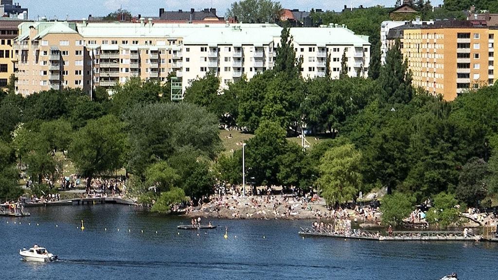 Utsikt från över Årstaviken från Årstabron. Tantolunden och Tanto strandbad i förgrunden med Högalidskyrkan i fonden.