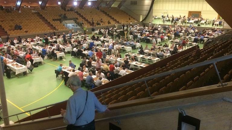 Flera hundra schackspelare i Eriksdalshallen.