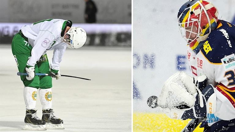 Hammarby Bandy och Djurgården hockey