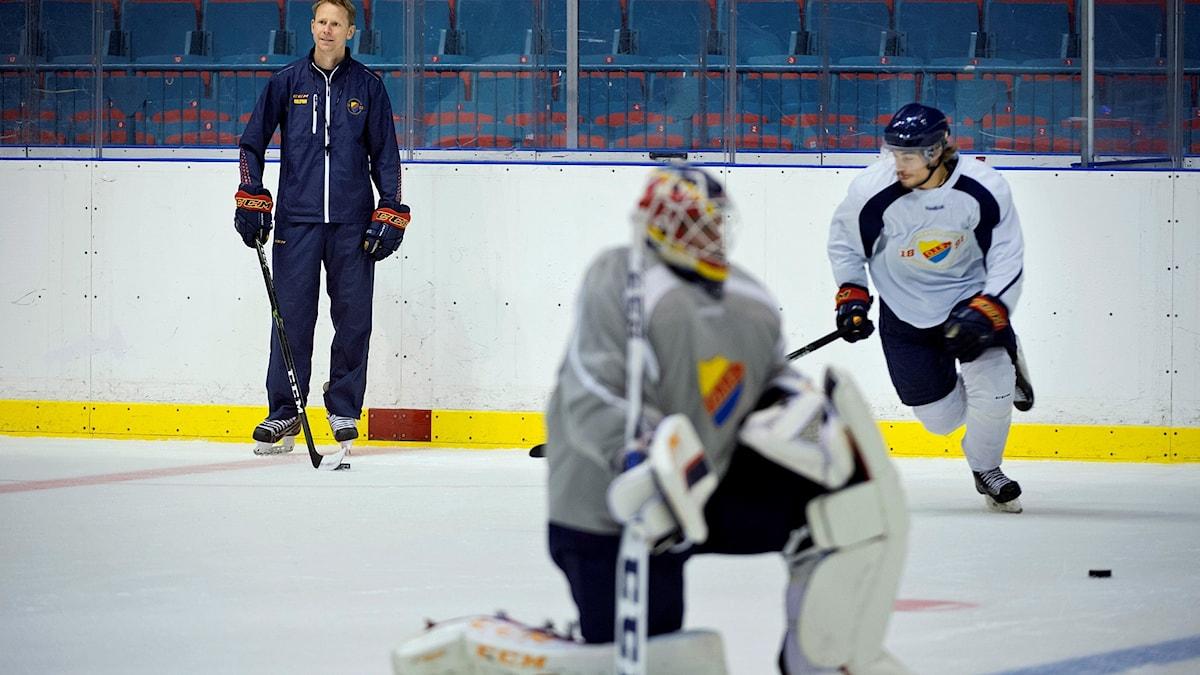 Djurgården hockey, tränare Robert Ohlsson och två spelare på isen.