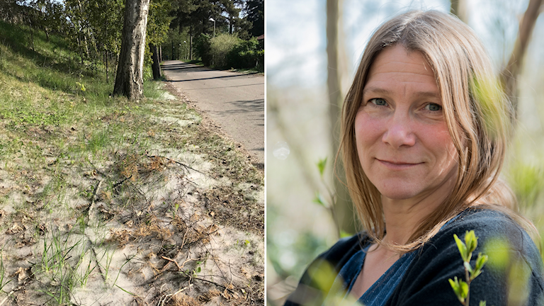 Pollen-ludd och Pia Östensson.