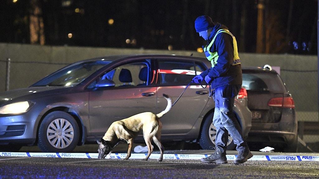 Polis och polishund