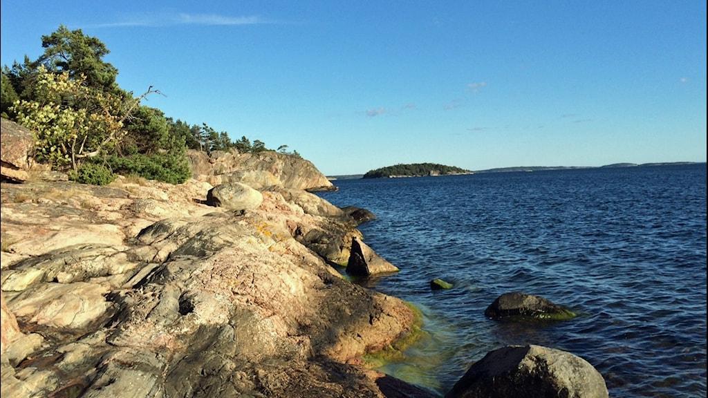 Klippor i Stockholms skärgård. Skärgården föreslås nu bli världsarv