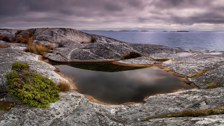 Östersjöbild Jerry Hermansson