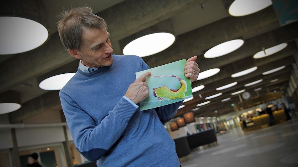 Fredrik Ronquist, forskare på Naturhistoriska, i P4 Stockholm.
