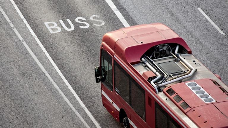 En röd SL-buss.