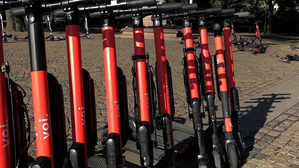 En rad elsparkcyklar står uppställda vid ett torg. I bakgrunden ligger flera släppta och välta på marken.
