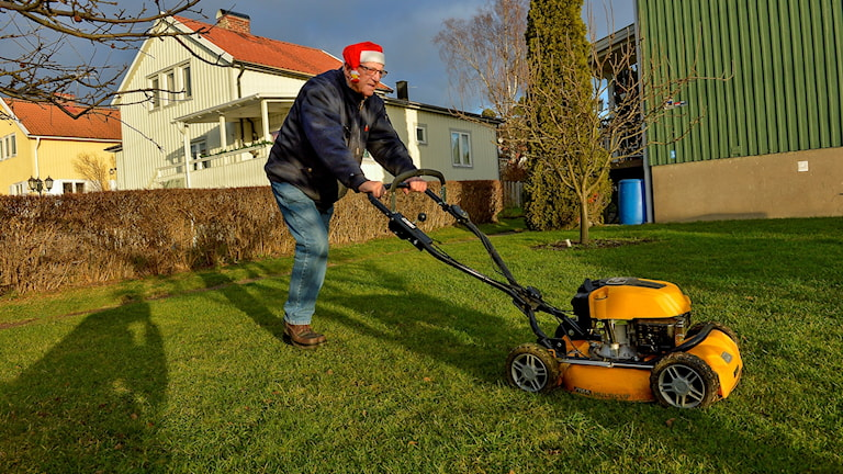 KG Johansson i Älvsjö  passar på att klippa gräset inför förra julen