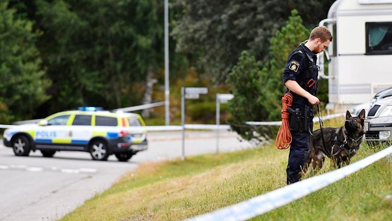 En polis med hund står vid en parkering i Tyresö.