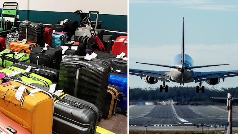 Kasta Väskor På Arlanda : Swedavia om bagagekaoset quot kan inte annat ?n beklaga p