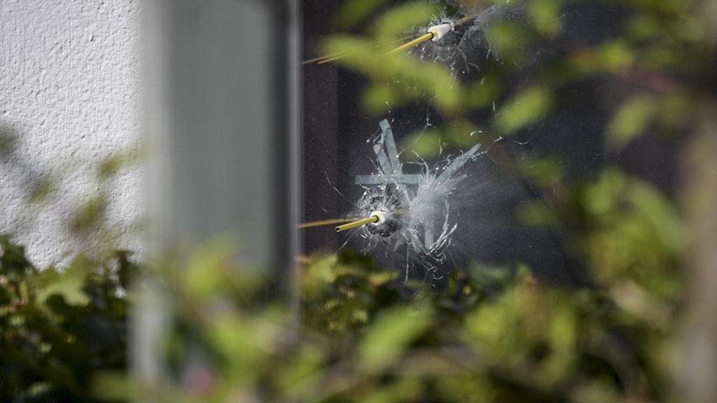 Fönster med skotthål.