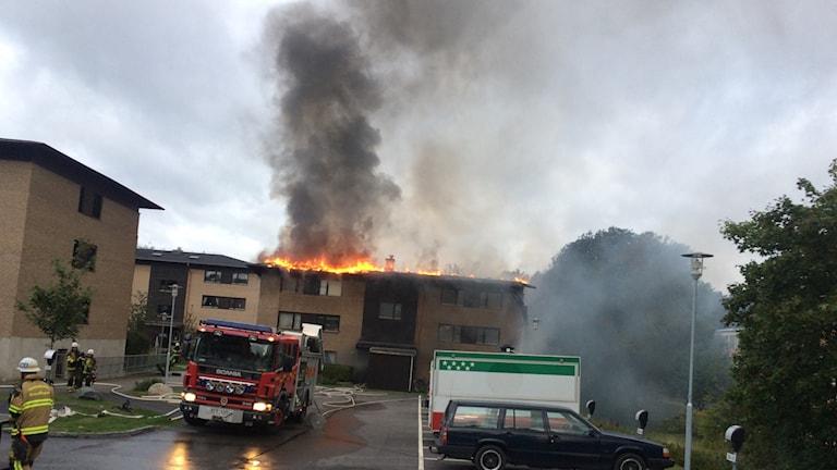 Lågor slår ut från taket på ett flerfamiljshus i Vallentuna. Foto: Anders Hildemar Ohlsson/ Sveriges Radio
