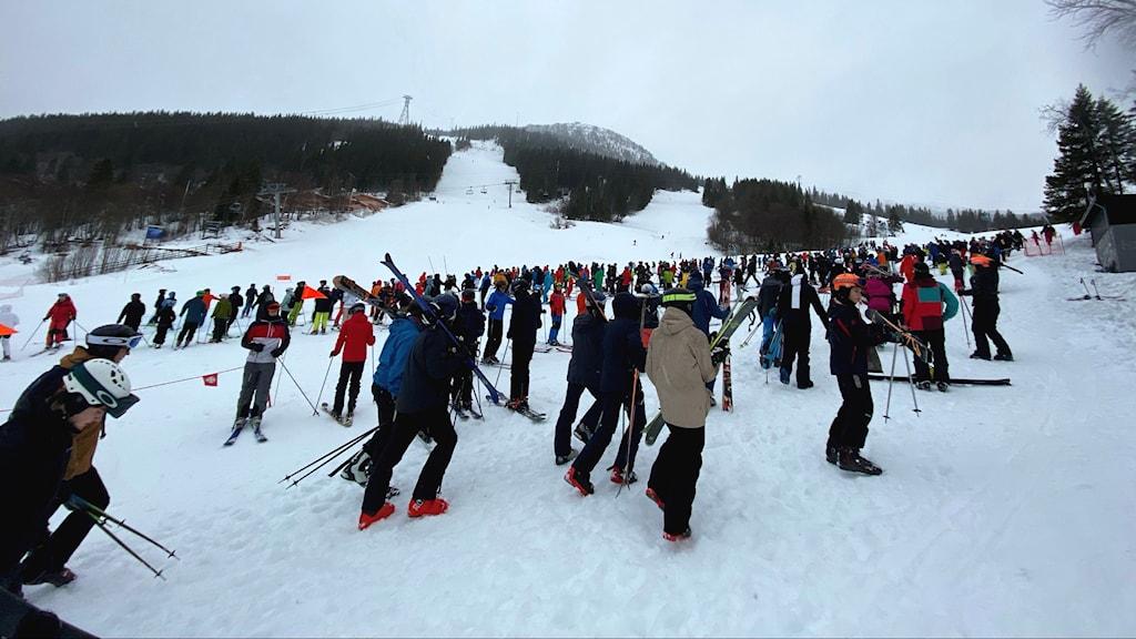 Flera skidåkare står i en snötäckt skidbacke.