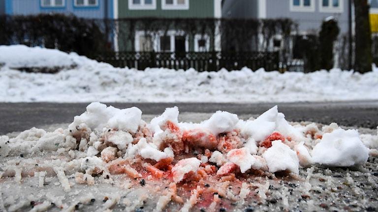 Blodspår i snön efter dubbelmordet i Kista