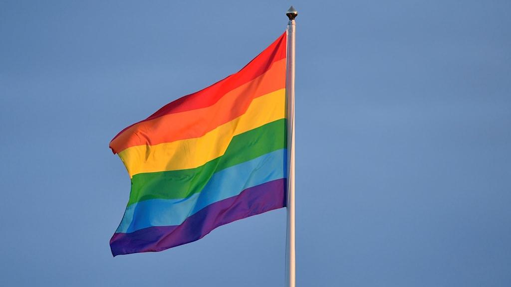 Prideflagga (arkivbild).
