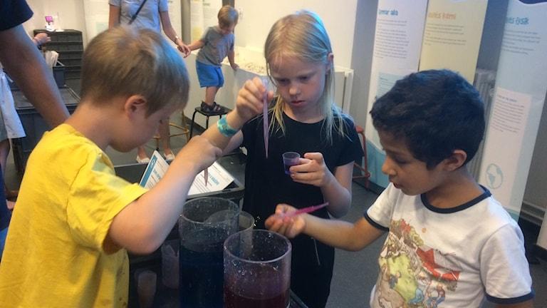 Gustaf, Ida och Samuel undersöker salt- och sötvatten på Sjöfartsmuseets Sommarlabb.Saltvattnet är blåfärgat och sötvattnet rödfärgat. Vattnet finns i glascylindrar och till sin hjälp har barnen pipetter.