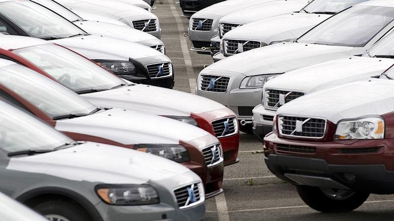 Volvobilar i långa rader. Foto: Adam Ihse/Scanpix.