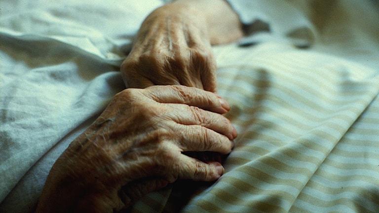 Äldre person vilar sina händer på täcket. Arkivfoto: SVT Bild.