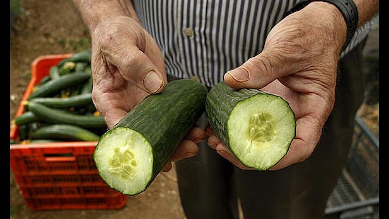 Orena grönsaker kan vara en tänkbar smittkälla i sådana här fall.