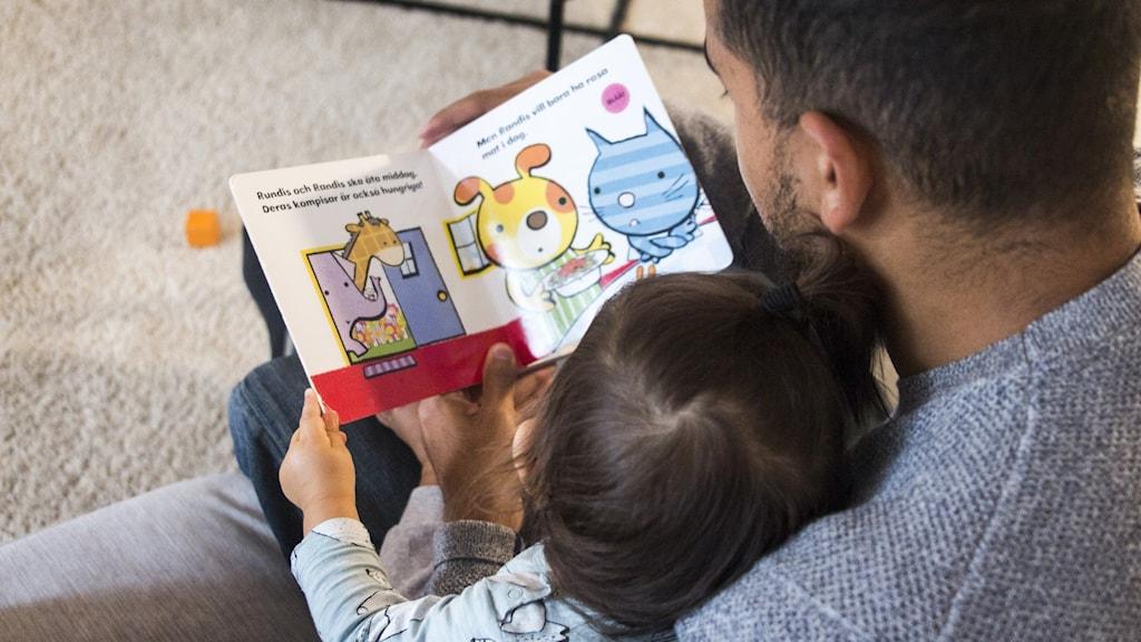 En person läser ur en sagobok för en barn som sitter i personens knä. Foto: isabell Höjman/TT