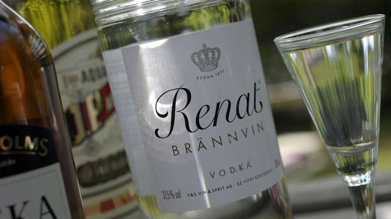 Bild på en sprit flaska.  Foto: Fredrik Sandberg / Scanpix.