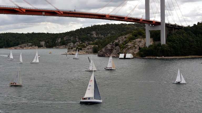 Segelbåtar under Tjörnbron.