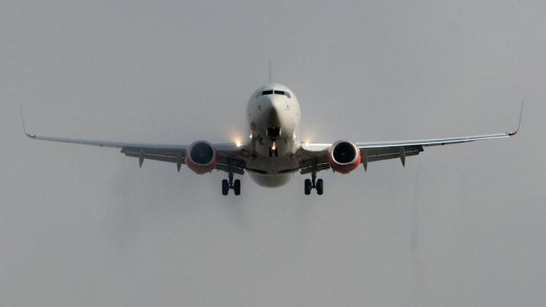 flyg flygplan resa flygplats turism