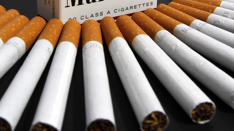 Cigaretter ligger uppradade. Foto: Toby Talbot/Scanpix