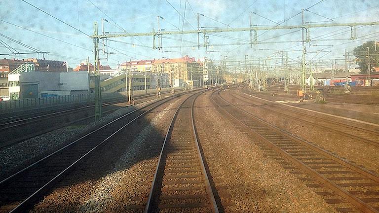 Foto: Johanna Storm/P4 SR Göteborg