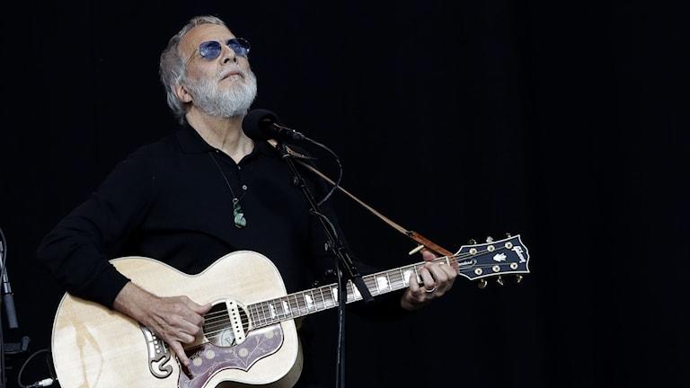 En man med skägg och svarta solglasögon spelar gitarr och sjunger på en scen.