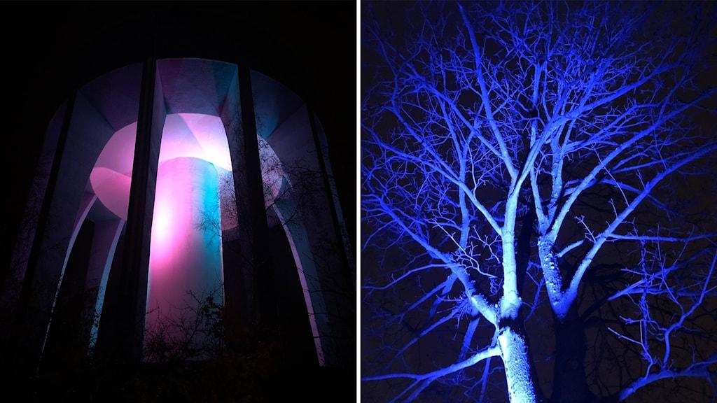 Ljuskonstverk i Biskopsgården