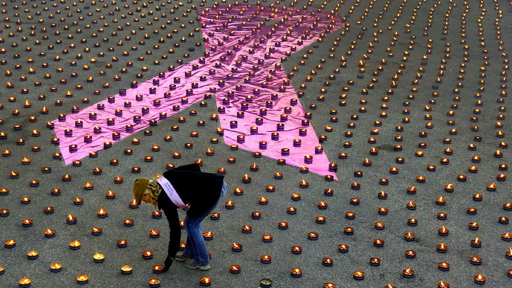 Marschaller och rosa band. Foto: Björn Larsson Ask/Scanpix.se