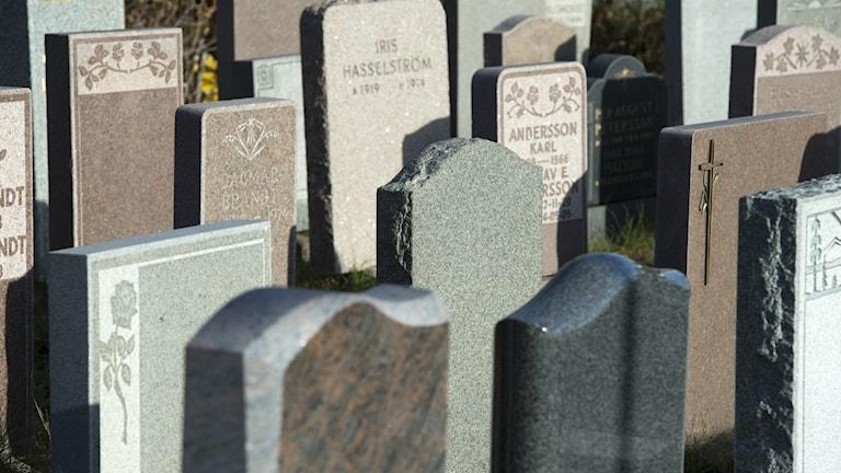 Gravstenar på kyrkogården. Foto: Leif R Jansson/TT
