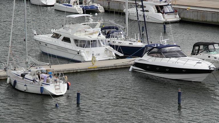 Båtar förtöjda vid småbåtshamn