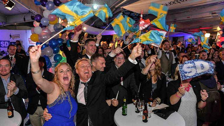 Happy Sweden Democrats on election night. Photo: Anders Wiklund/ TT