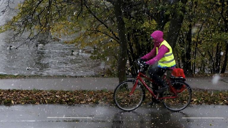 Cyklist syklar längs å i lätt snö. Foto:Hasse Holmberg/TT Bild