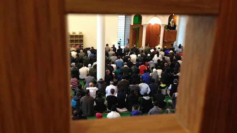 Eid ad-adha bön i Göteborgs moské. Arkivfoto: Erica Hedin/SR