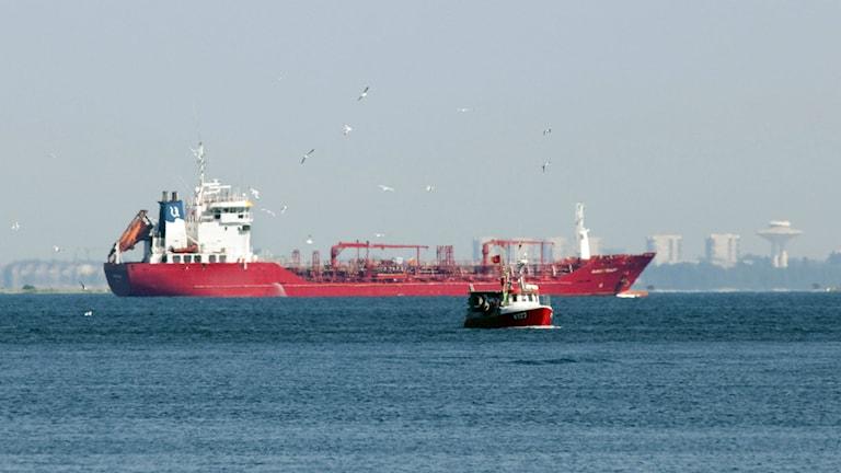 Regeringens utredare tycker att tonnageskatt skulle vara bra för närigen. Foto:Drago Prvulovic / SCANPIX