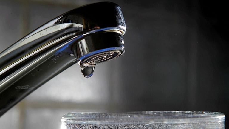 Partille kommun uppmanar invånarna att koka vattnet. Foto:  Håkon Mosvold Larsen / Scanpix NORGE