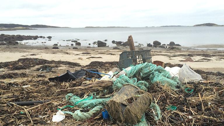 Skräp på stranden på Tjärnö utanför Strömstad. Foto: Susanne Ehlin/P4 Göteborg.