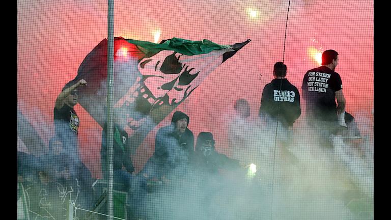 Bengaler brann under söndagens match Foto: Björn Larsson Rosvall/ TT