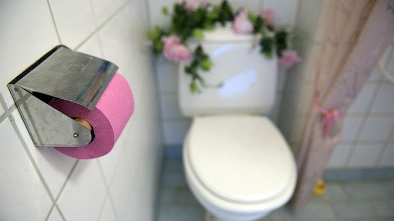 Vit toalettstol smyckad med eosa blommor och med rosa toalettpapper. Foto: Maja Suslin/TT Bild