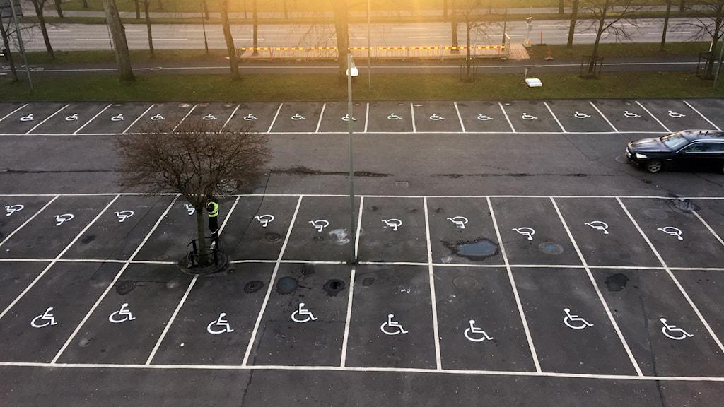 Ommålade parkeringsplatser mötte bilister vid Stora teatern. Foto: Niklas Oveborn
